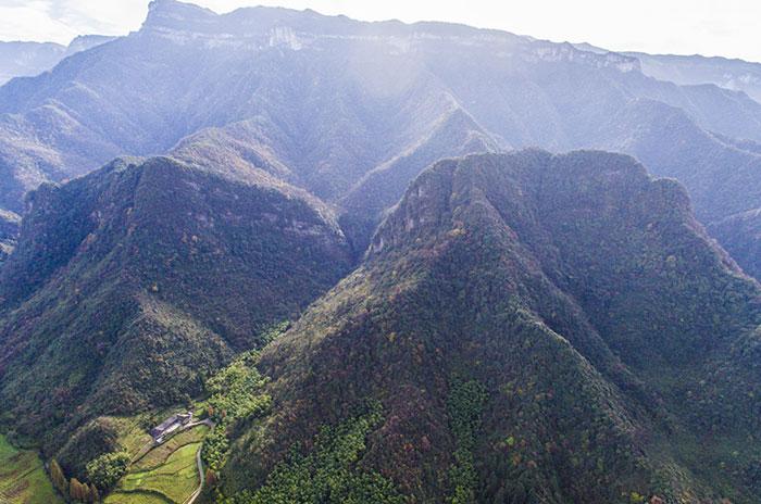 金佛山国家级自然保护区