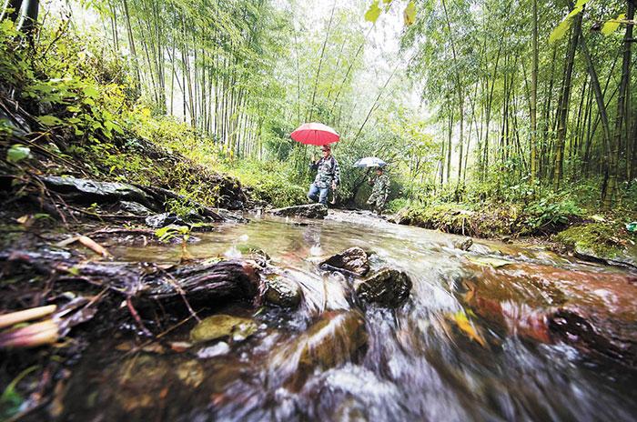 10月9日,李家兄弟在保护区内巡山护林。