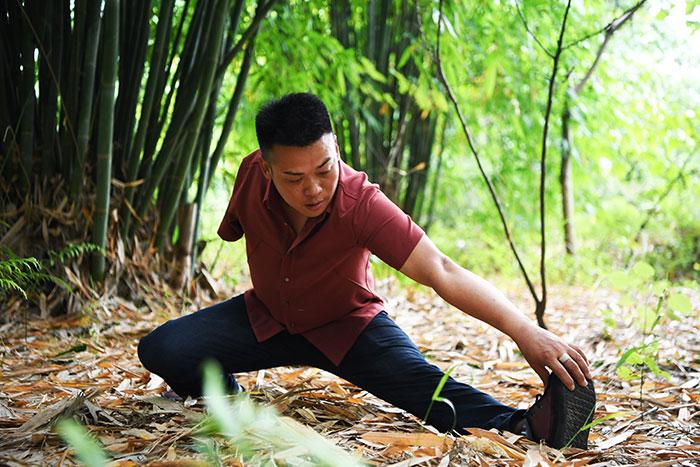 刘毅在位竹林内锻炼